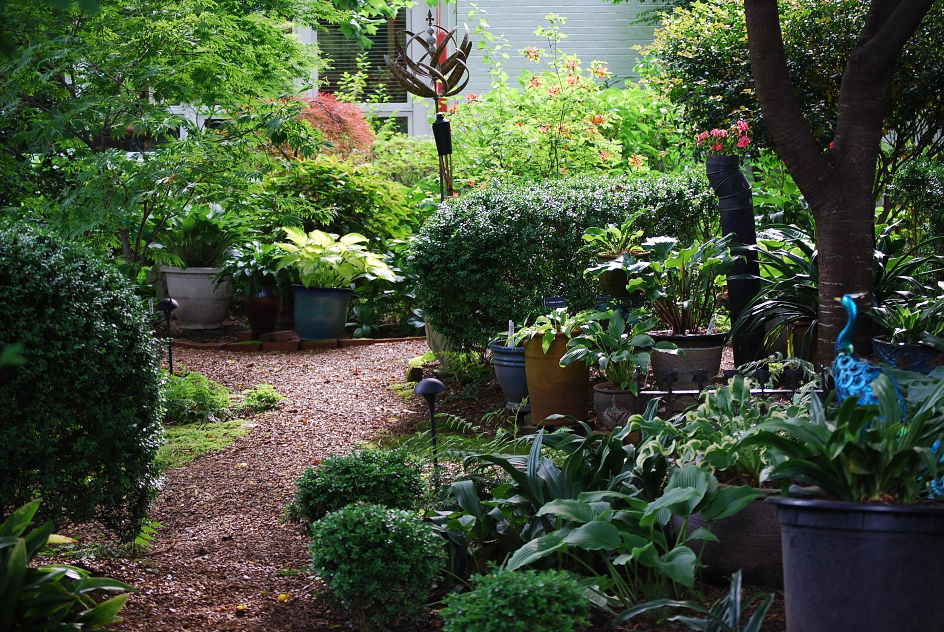 Tranquility Garden