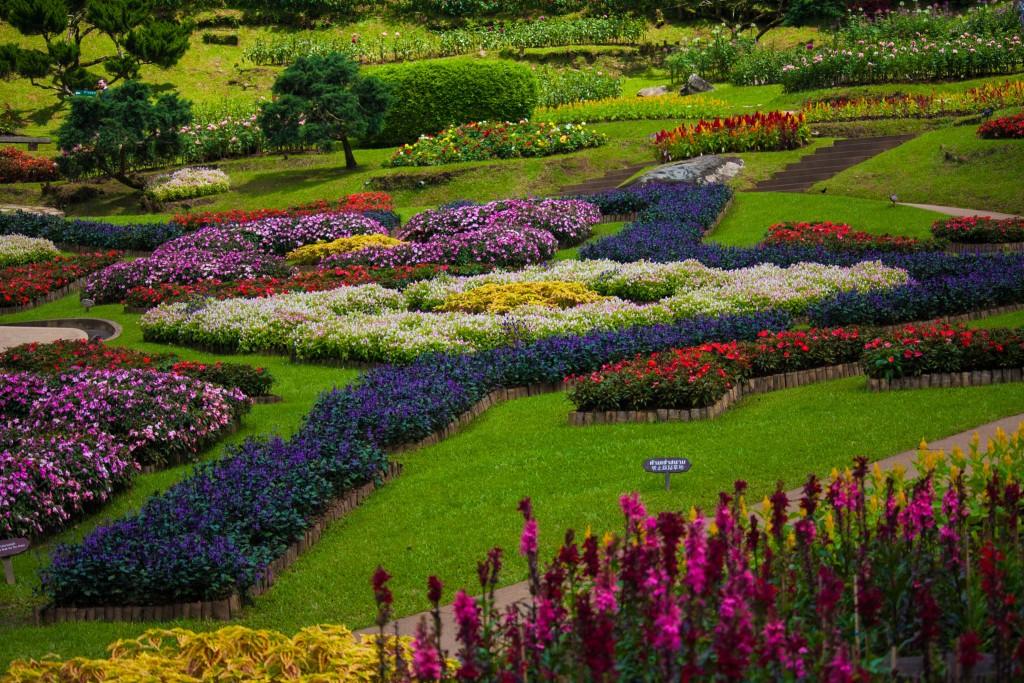 A Pollinator-Friendly Garden